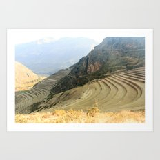 Incan Terraces Art Print
