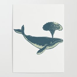 Humpback Whale Blowing Water Scratchboard Poster