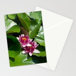 Lotus garden nature photo Stationery Cards
