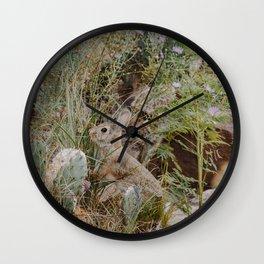 Spooked Desert Bunny Wall Clock