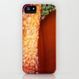 backdoor iPhone Case