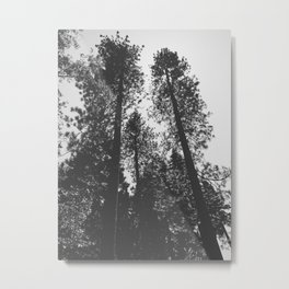 THE WOODLANDS Metal Print