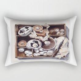 Mushroom box Rectangular Pillow
