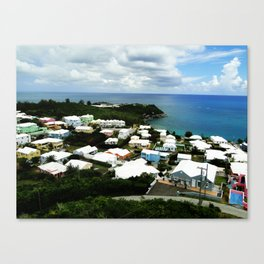 A House of a Different Color Canvas Print
