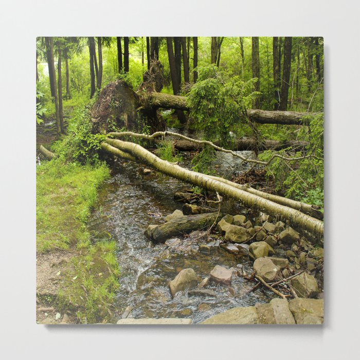 Across the Creek Metal Print