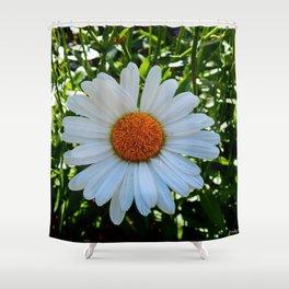 Single White Daisy Shower Curtain