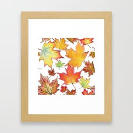 Autumn Maple Leaves Framed Art Print