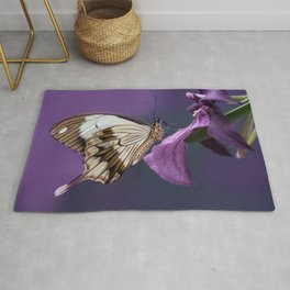 Pretty butterfly on pink flower Rug