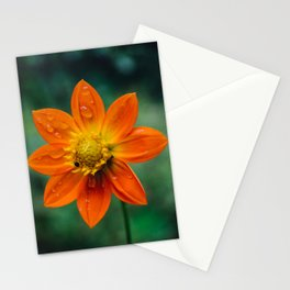 Morning dew and midday stroll Stationery Cards