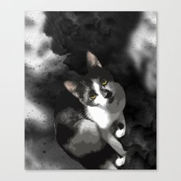 Gypsy Da Fleuky Cat and the Black Starry Night Canvas Print