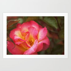 Flower Web Art Print