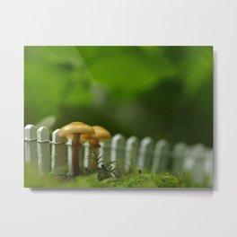 Along The Fence We Go...Mushroom Photograph Metal Print