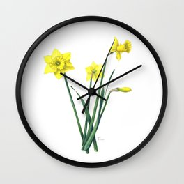 Yellow Daffodils Botanical Illustration Wall Clock