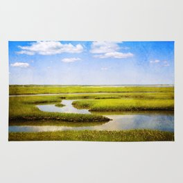 View in Green and Blue from Bass Hole Boardwalk at Grays Beach Yarmouth Port MA Cape Cod Summer Rug