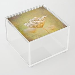 The Queen - Square Acrylic Box