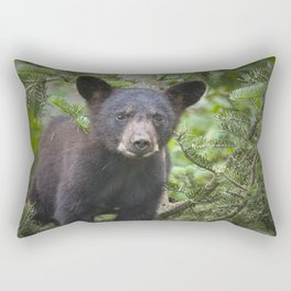 Black Bear Cub in Northern Minnesota Photograph Rectangular Pillow