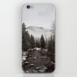 Mid Winter iPhone Skin