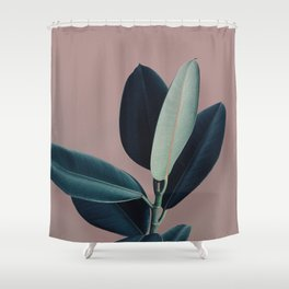 Ficus elastica - berry Shower Curtain