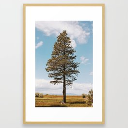 Marsh Tree Framed Art Print