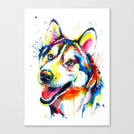 Husky Illustration Canvas Print