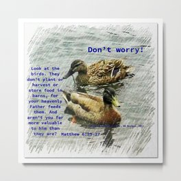 Don't worry, God cares for the birds, bible verses Metal Print