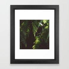 Ferns of Emerald Framed Art Print