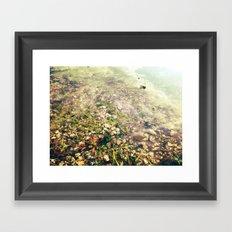 Puddle Me Framed Art Print