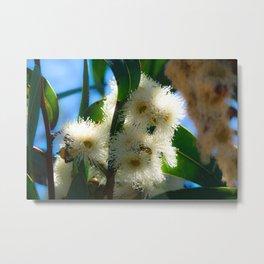 fluffy trees Metal Print