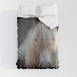 Friendly looking Horse Comforters