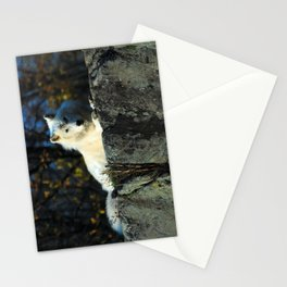 Sentinel: Arctic Wolf Stationery Cards