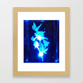 A Butterfly and a Rose   Framed Art Print