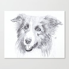 Border Collie Sketch Canvas Print