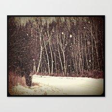 winter land Canvas Print