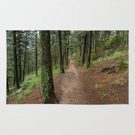 Trails Rug