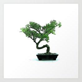 Minimal Bonzai Bonsai Tree Peace Meditation Yoga Luck Gift Art Print