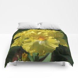 Golden Iris flower - 'Power of One' Comforters
