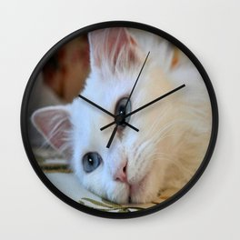 Portrait of A Blue Eyed Van Cat Wall Clock
