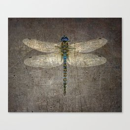 Dragonfly On Distressed Metallic Grey Background Canvas Print
