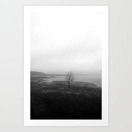 Empty Folsom Lake Bed - Lonesome Tree - Black And White Art Print
