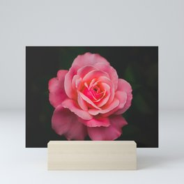 Smell the Pink Mini Art Print