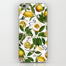 LEMON TREE White iPhone & iPod Skin