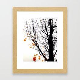 Last Leaves Framed Art Print