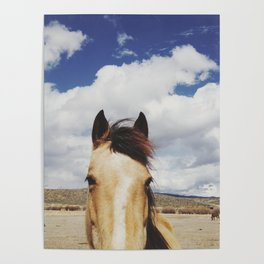 Cloudy Horse Head Poster