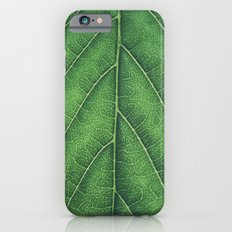 Green leaf background Slim Case iPhone 6s