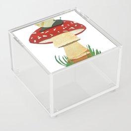 Mushroom & Snail Duo Acrylic Box