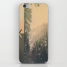Big Bear iPhone & iPod Skin