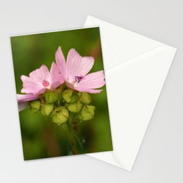 Prairie Mallow Flowers and Seed Pods Stationery Cards