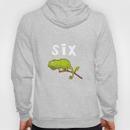Kids 6 Year Old Lizard Reptile Birthday Party 6th Birthday Hoody