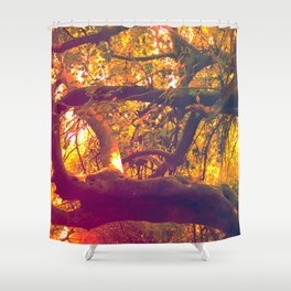 Infinite Connection Shower Curtain