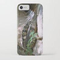 crocodile iPhone & iPod Cases featuring crocodile by lennyfdzz